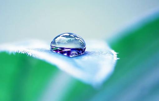一滴水一个梦