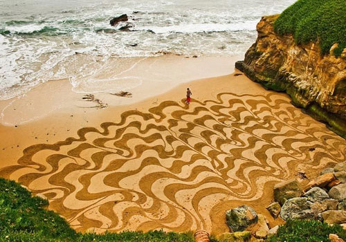 你的沙滩我的麦田