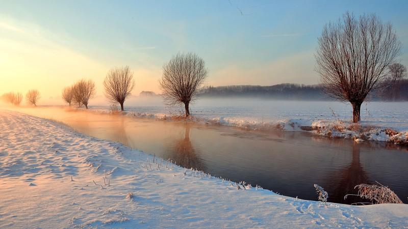 冬雪翩翩,静待生命花开